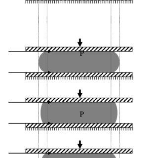 (PDF) STRESS ANALYSIS OF RUBBER BLOCKS UNDER VERTICAL