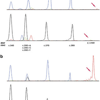 DNA fragmentation occurring in formalin-fixed paraffin