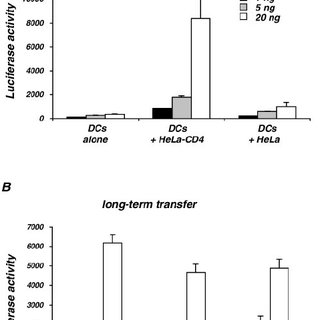 pH-independent HIV transmission by Raji DC-SIGN cells. (A