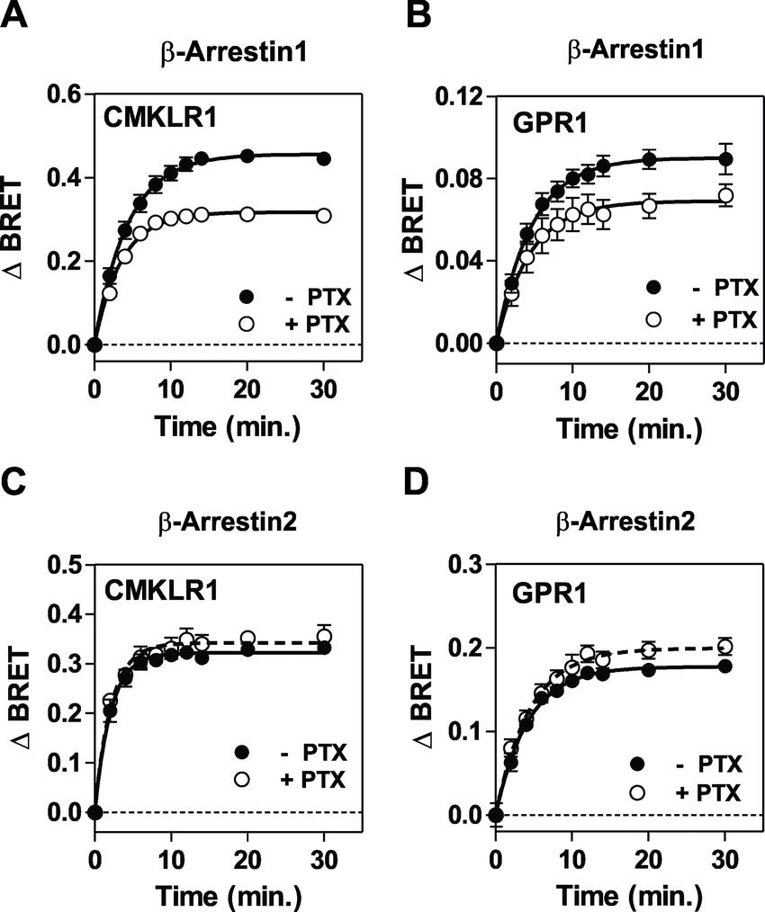 medium resolution of impact of pertussis toxin on arrestins recruitment to cmklr1 and download scientific diagram