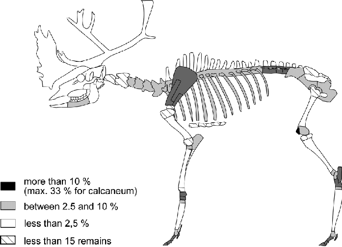 Combe Saunière-Solutrean-distribution of canid gnaw marks