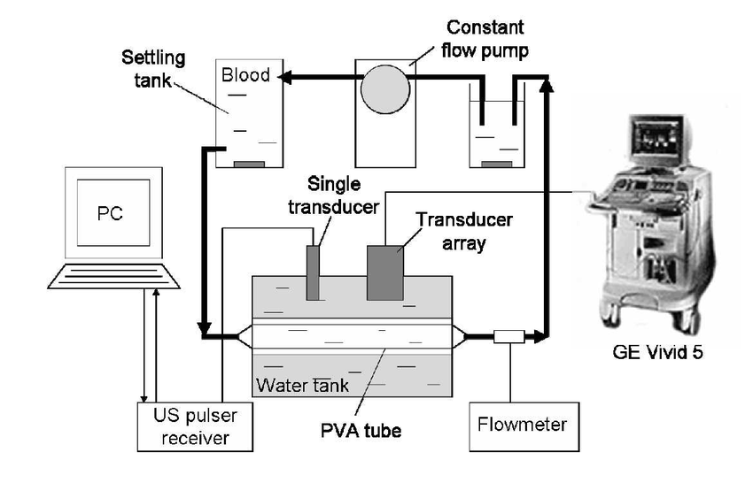 Block diagram of the experimental set-up. The ultrasound