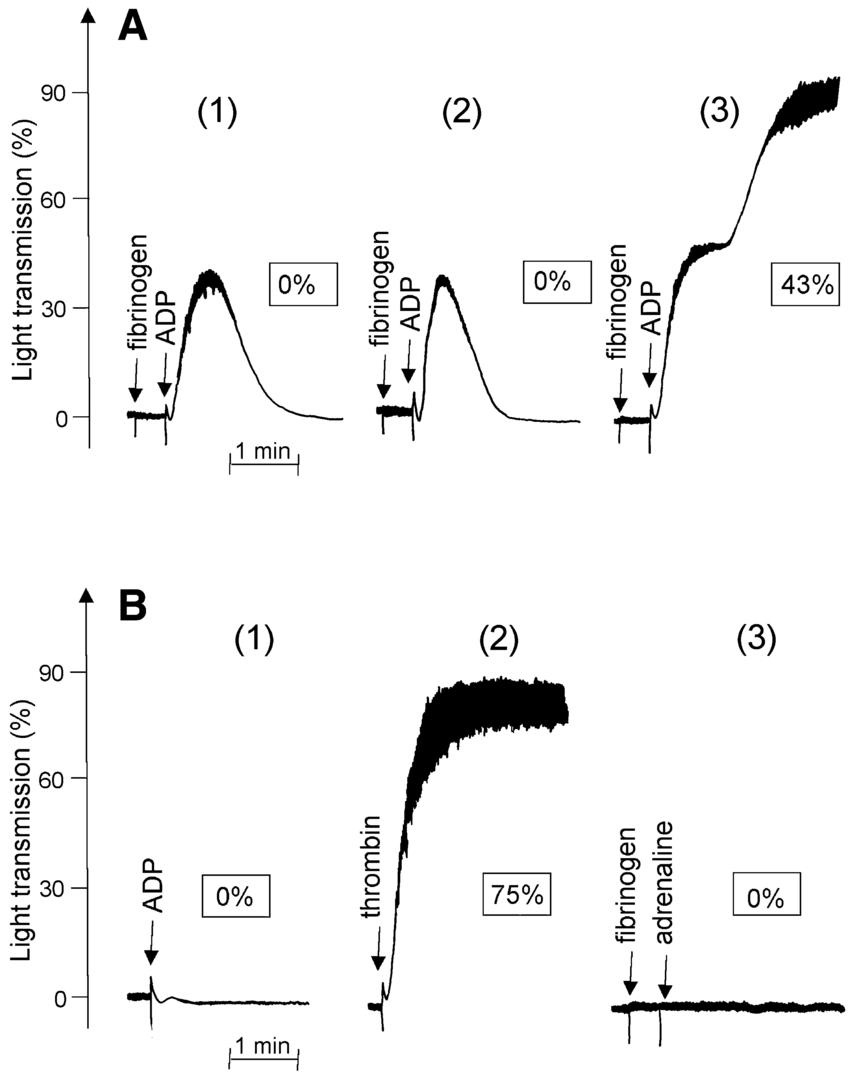 platelets labeled diagram