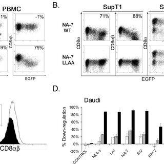 (PDF) Human Immunodeficiency Virus Nef Induces Rapid