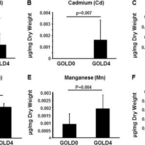 CFTR is decreased in the lung of GOLD 4 COPD patients. (A