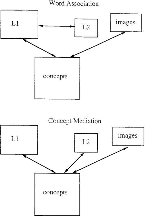small resolution of the word association model and the concept