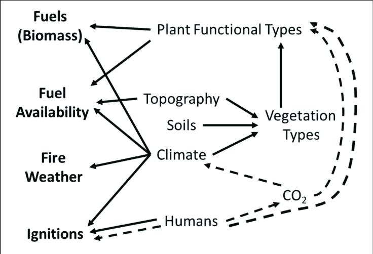 | Influences of abiotic and biotic factors (climate, soils