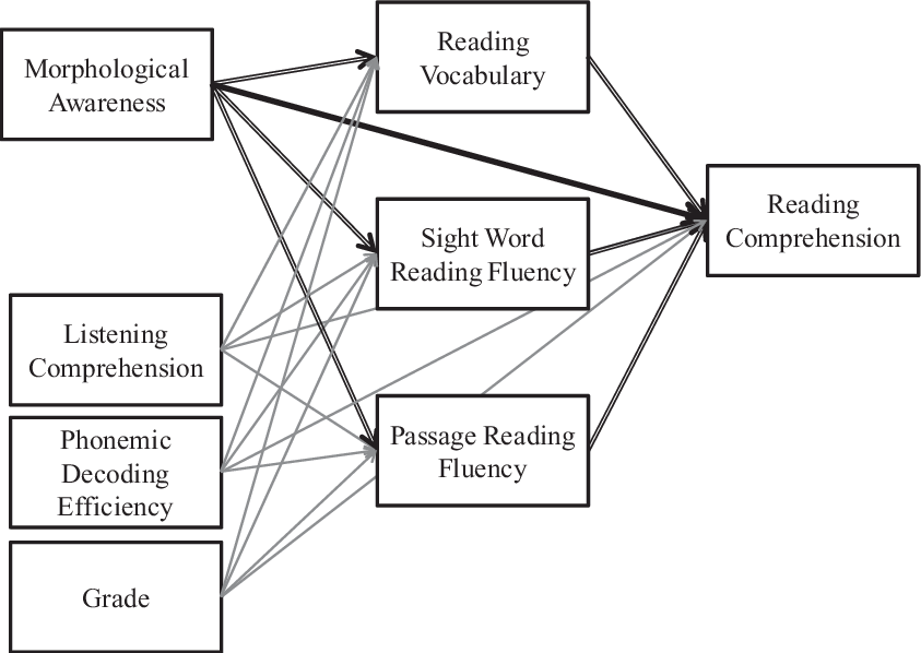 A path diagram representing the hypothesized path analysis