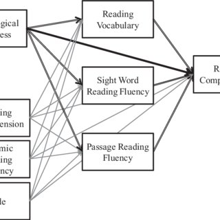 Roles Of Morphological Awareness In The Reading
