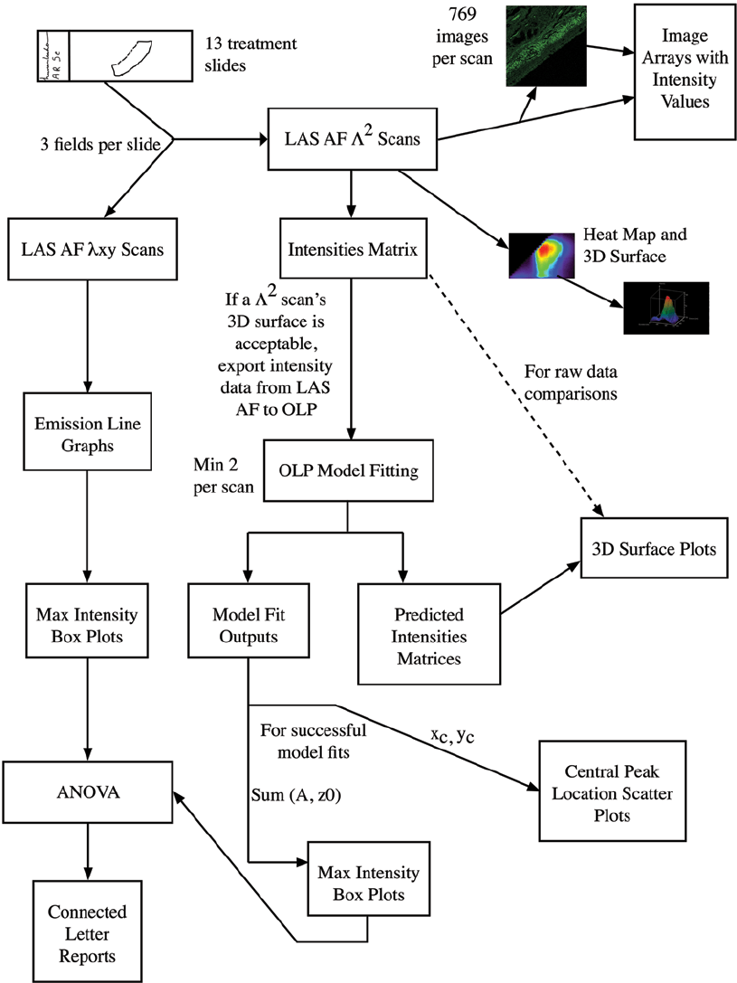 hight resolution of 2 data collection and analysis process flow diagram the flow chart depicts the entire