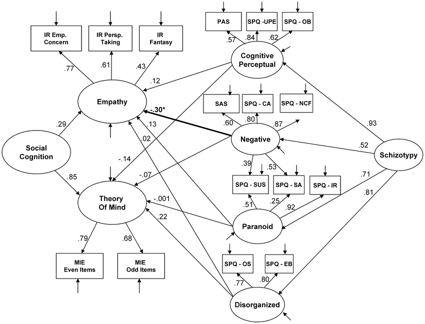 Full structural equation model linking social cognition to...