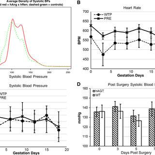 (PDF) Renin-Angiotensin System Transgenic Mouse Model