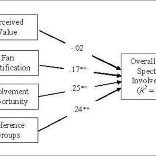 (PDF) Motivational Factors Influencing Sport Spectator