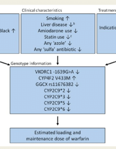 Dosing algorithm warfarin the flow chart illustrates publically available http also rh researchgate