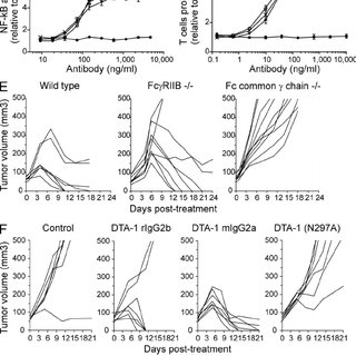 Engagement of Fc Rs by DTA-1 is required for antitumor