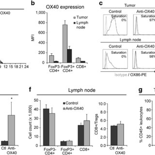 (PDF) OX40 engagement depletes intratumoral Tregs via