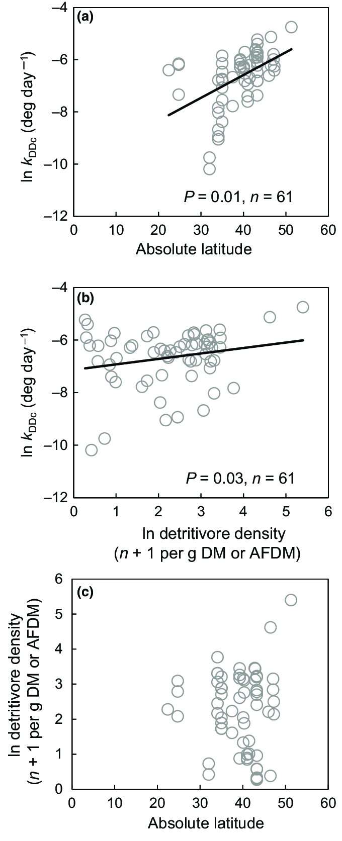 hight resolution of relationships between litter breakdown absolute latitude and detritivore density at t 50