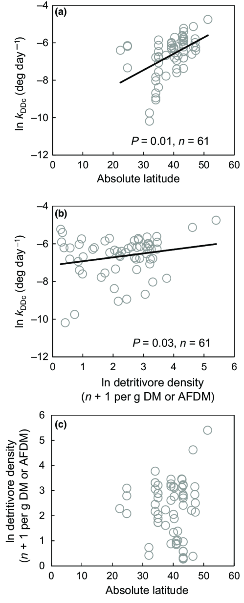 small resolution of relationships between litter breakdown absolute latitude and detritivore density at t 50