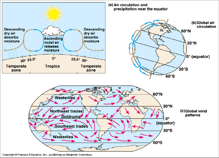 global wind patterns diagram of the earth s crust shows air circulation and is formed due to