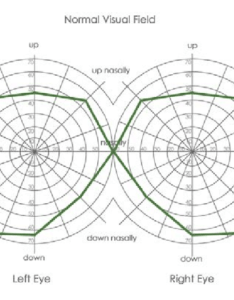 Vasrd visual field chart used to score for rating disability showing  normal also rh researchgate
