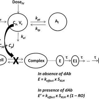(PDF) Integrated Pharmacokinetic/Pharmacodynamic Analysis