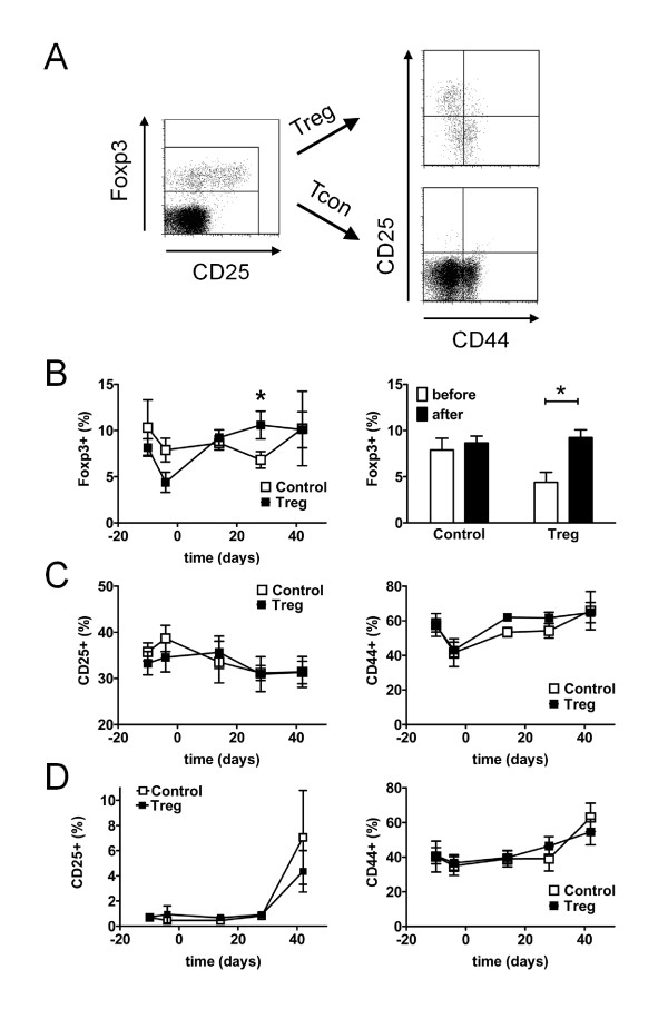 Changes in regulatory T cell (Treg) and conventional T