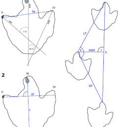 schematic outline drawings based on footprint dfmmh fv 644 from the langenberg tracksite  [ 850 x 1029 Pixel ]