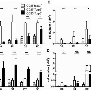 (PDF) Continuous Activation of the CD122/STAT-5 Signaling