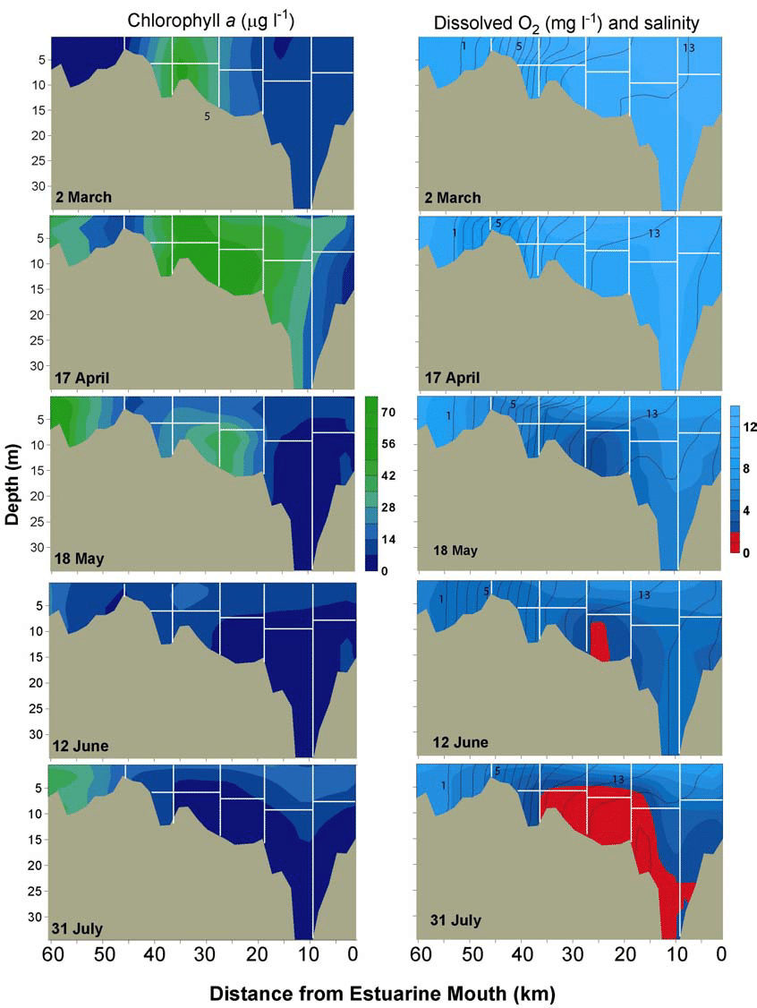 hight resolution of 5 contour plots of chlorophyll a left panel and dissolved oxygen salinity right panel in the patuxent river estuary in the winter spring