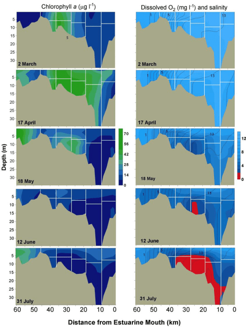 small resolution of 5 contour plots of chlorophyll a left panel and dissolved oxygen salinity right panel in the patuxent river estuary in the winter spring