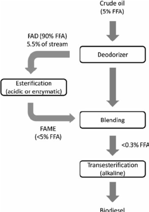 small resolution of schematic flow diagram showing how pfad is produced esterified and recirculated to the neutral