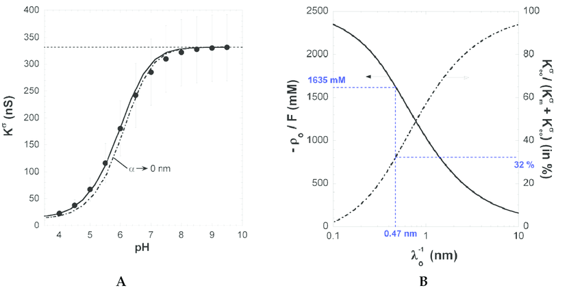 (A) Surface conductivity K σ vs. pH for PAA film in 1 mM