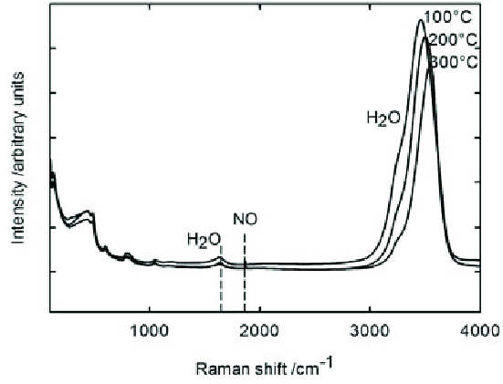 Raman spectra in the aqueous phase in the system NO + H2O