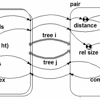 (PDF) Spatially-explicit competition indices and the