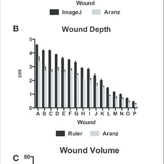 (PDF) Validation of a Laser-Assisted Wound Measurement