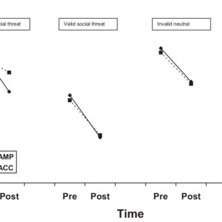 (PDF) The Effect of a Single-Session Attention