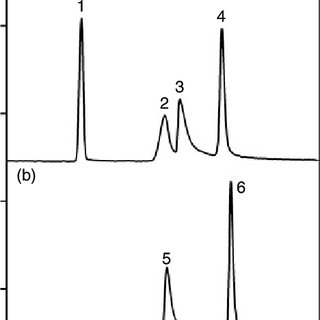 (PDF) Capillary electrophoresis study of iron(II) and iron