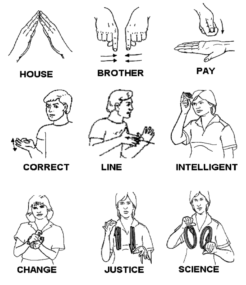 Examples of Signs Used in the LSCh (Chilean Sign Language