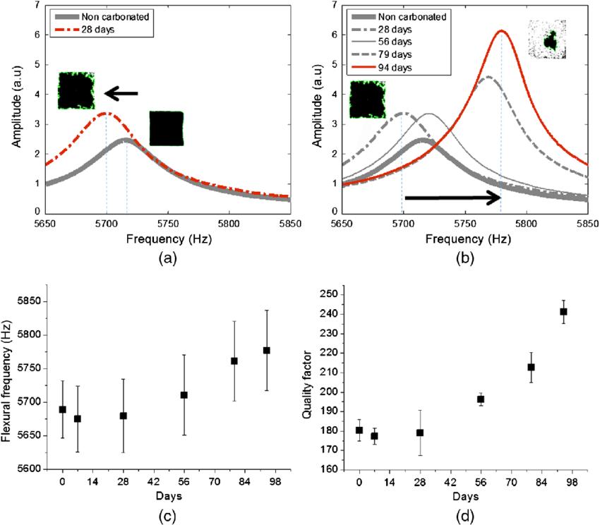 Linear vibration resonance responses of the fundamental
