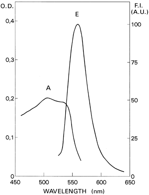 small resolution of absorption a and fluorescence emission e spectra of the naphthol fast
