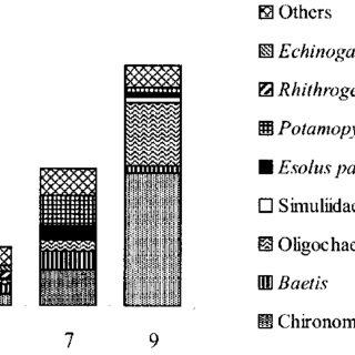 (PDF) Macroinvertebrate communities along a third-order