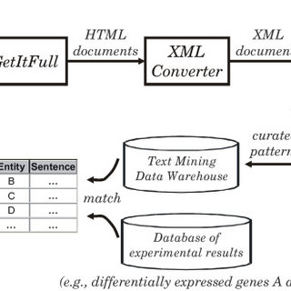 Schematic diagram of the text mining analysis pipeline