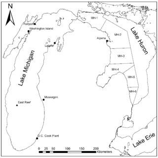 (PDF) Burbot growth and diets in Lakes Michigan and Huron