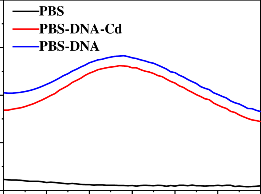 The ultraviolet-visible spectrum of PBS solution (50 mmol