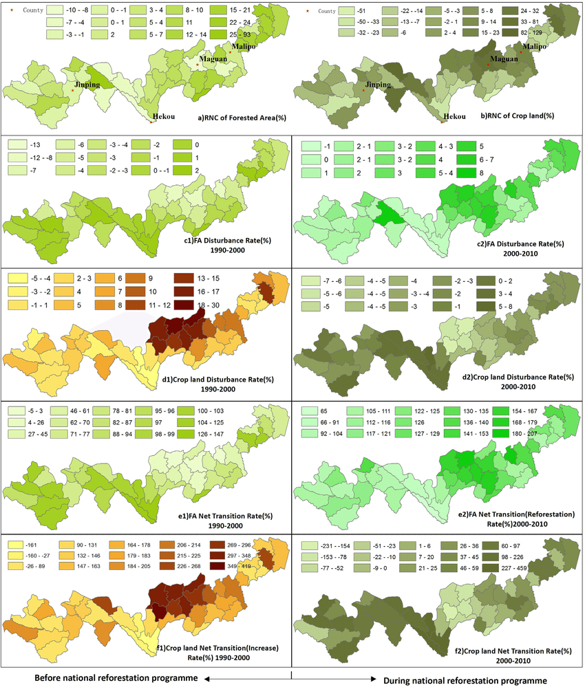 hight resolution of land cover change before and during the national reforestation programmes at the township level