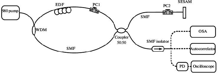 Schematic diagram of a PML fiber laser based on NALM and