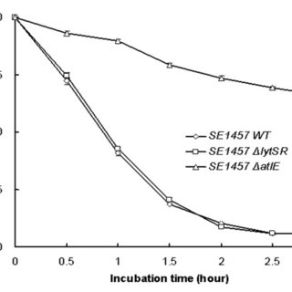 Growth curves of S. epidermidis 1457ΔlytSR. Bacterial