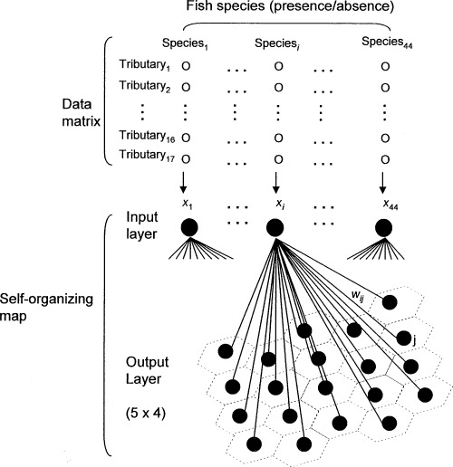 Schematic diagram of a self-organizing map (SOM). Data on