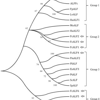 Data were expressed as the mean fold change (means±S.E., n