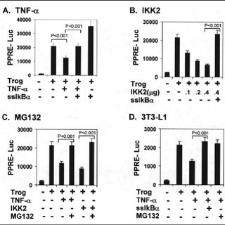 HDAC3 interaction with PPAR in adipocytes. A, ChIP assay